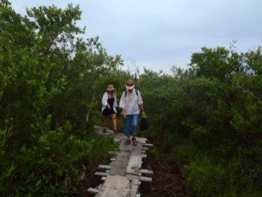 exploring maya ruins