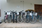 beach cruiser bicycles