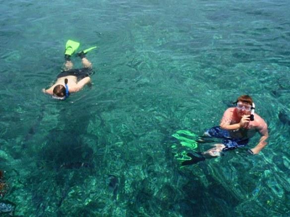 snorkeling ambergris
