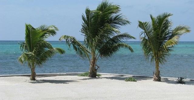Tropic Air Hurricane Evacuation Tips and NEMO Belize Hurricane Information