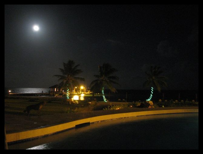 Night photography tips - North Ambergris Caye - Belize Blog