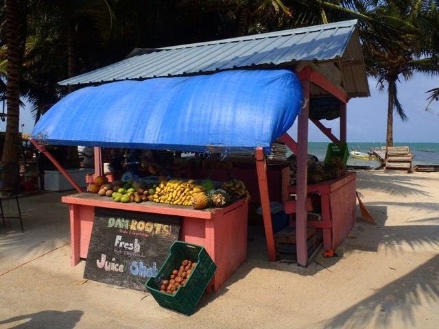 fruit in belize
