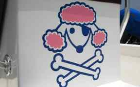 poodle pirate belize