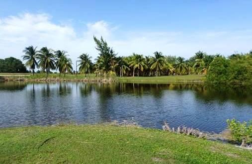 Beautiful lake area