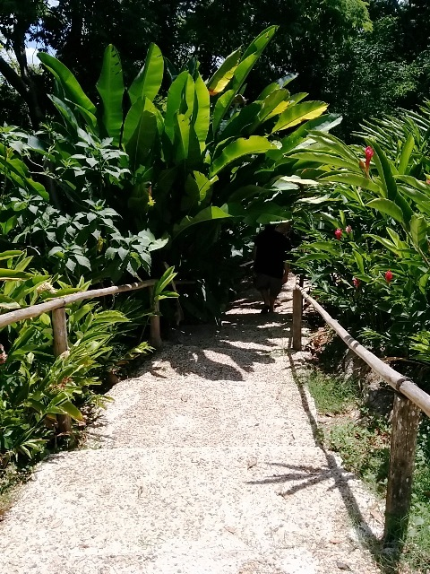 San Ignacio tours