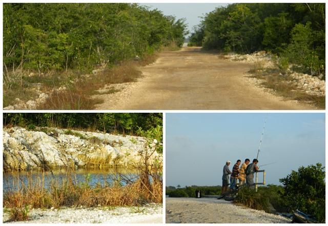 Grand Belizean Estates