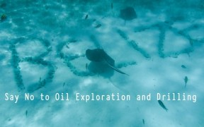 Belize oil
