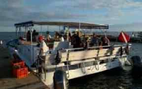 YOLO Belize