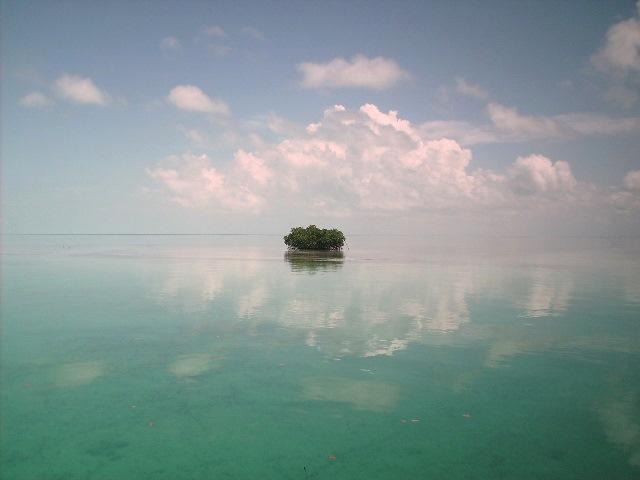 Living on Ambergris Caye