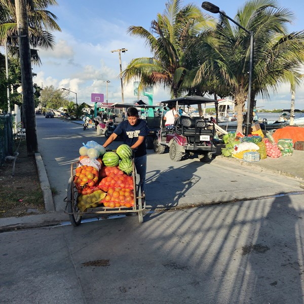 Produce shopping in San Pedro Belize