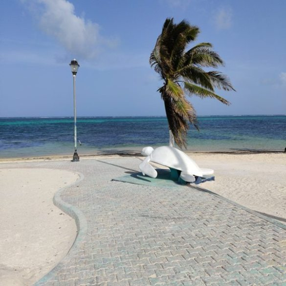 Belize Beaches: Banan Beach Belize Beach Resort