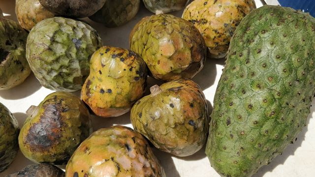 Fruits Grown in Belize