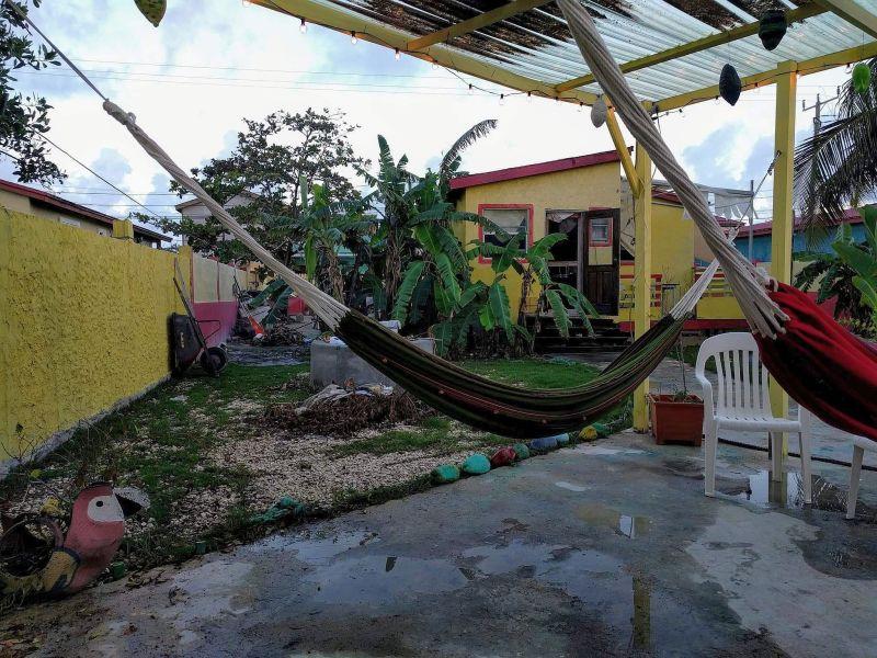 backyard hammocks dfc area