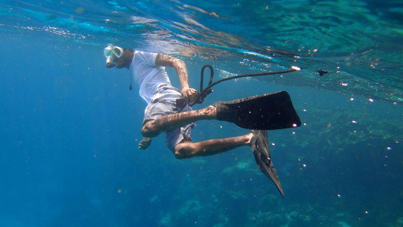 snorkeling hol chan marine reserve