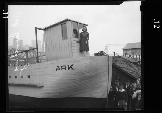Ark Hazel Tac 39-40