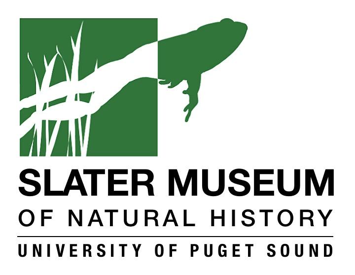 Slater Museum