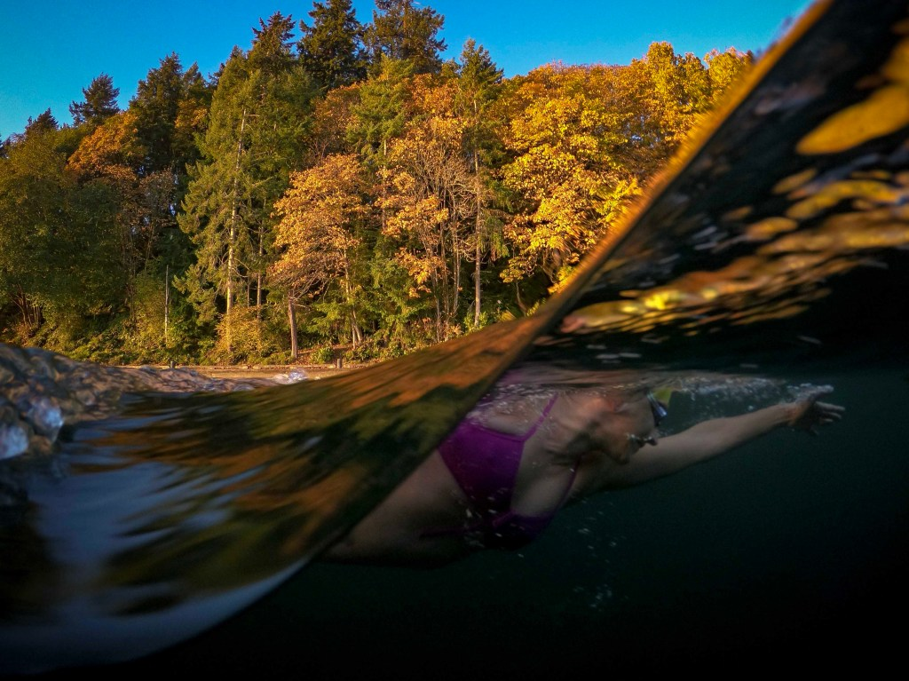 swimmer and fall trees