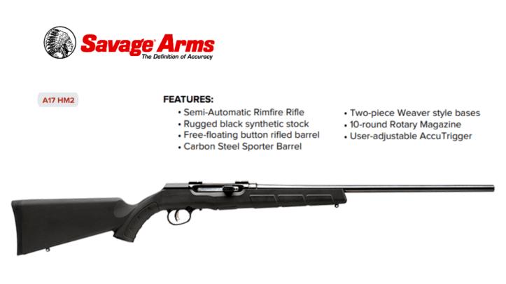 Savage Arms A17 HM2