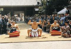 平成8年 第65代横綱貴乃花奉納手数入