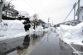 只見町の積雪: 只見町ブナセンター