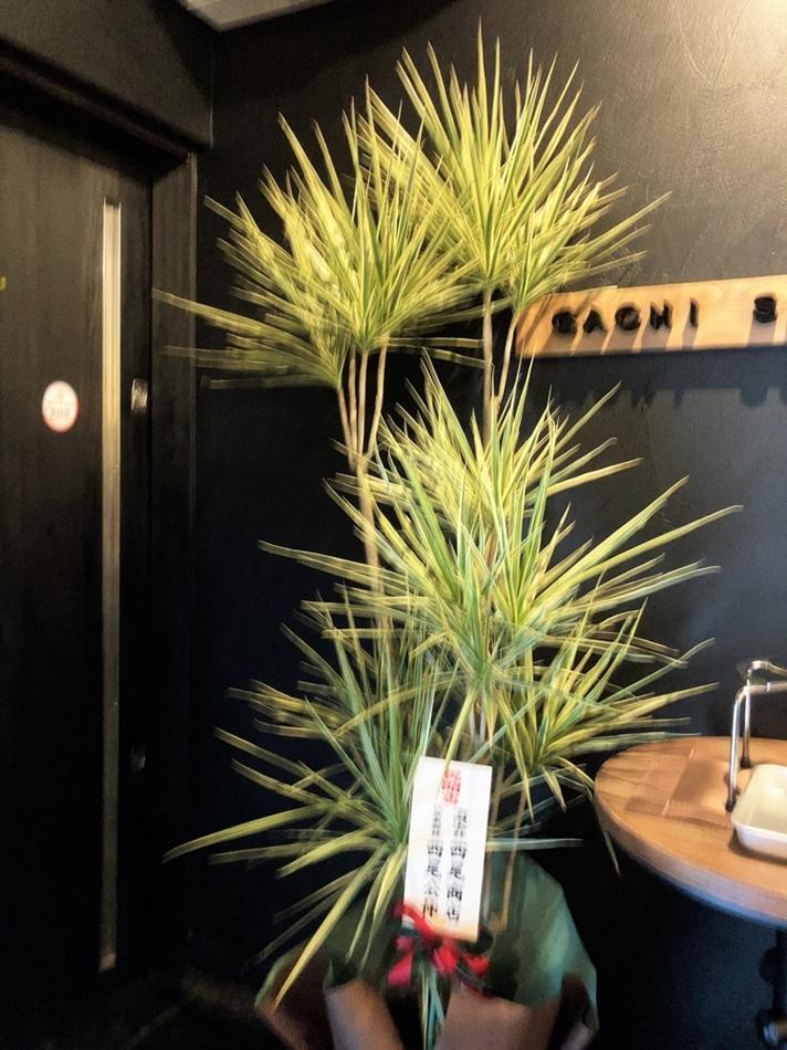 麦の空 GACHI SOBA DOJOへの花4