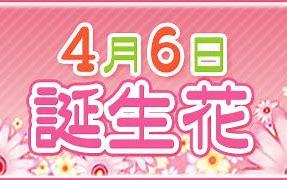 5000円~再チャレンジ!新しいルールが!(4月6日検証結果!)