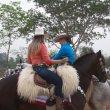 konie (13)