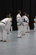 taekwondo-berlin-wedding-reinickendorf-tigers-195