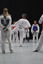taekwondo-berlin-wedding-reinickendorf-tigers-202