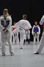 taekwondo-berlin-wedding-reinickendorf-tigers-202
