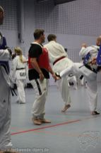 taekwondo-berlin-wedding-reinickendorf-tigers-207
