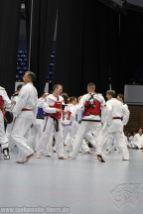 taekwondo-berlin-wedding-reinickendorf-tigers-218