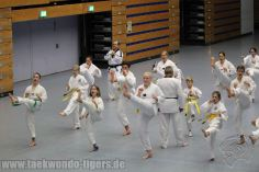 taekwondo-berlin-wedding-reinickendorf-tigers-226