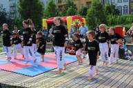 kampfsport-show-wedding-015