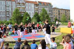 kampfsport-show-wedding-021