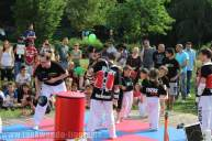 kampfsport-show-wedding-037
