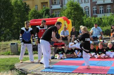 kampfsport-show-wedding-044