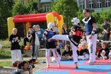 kampfsport-show-wedding-066