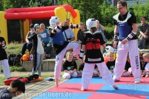 kampfsport-show-wedding-075