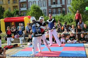 kampfsport-show-wedding-080