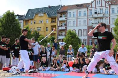 kampfsport-show-wedding-112