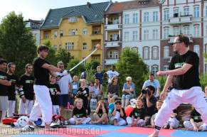 kampfsport-show-wedding-113