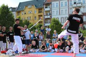 kampfsport-show-wedding-114