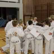 taekwondo-berlin-wedding-19