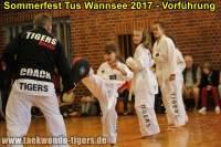 taekwondo-tus-wannsee-sommerfest-reinickendorf-wedding-berlin-30