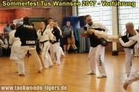 taekwondo-tus-wannsee-sommerfest-reinickendorf-wedding-berlin-36