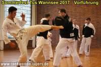 taekwondo-tus-wannsee-sommerfest-reinickendorf-wedding-berlin-40