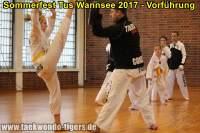 taekwondo-tus-wannsee-sommerfest-reinickendorf-wedding-berlin-41