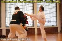 taekwondo-tus-wannsee-sommerfest-reinickendorf-wedding-berlin-42