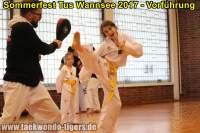 taekwondo-tus-wannsee-sommerfest-reinickendorf-wedding-berlin-43